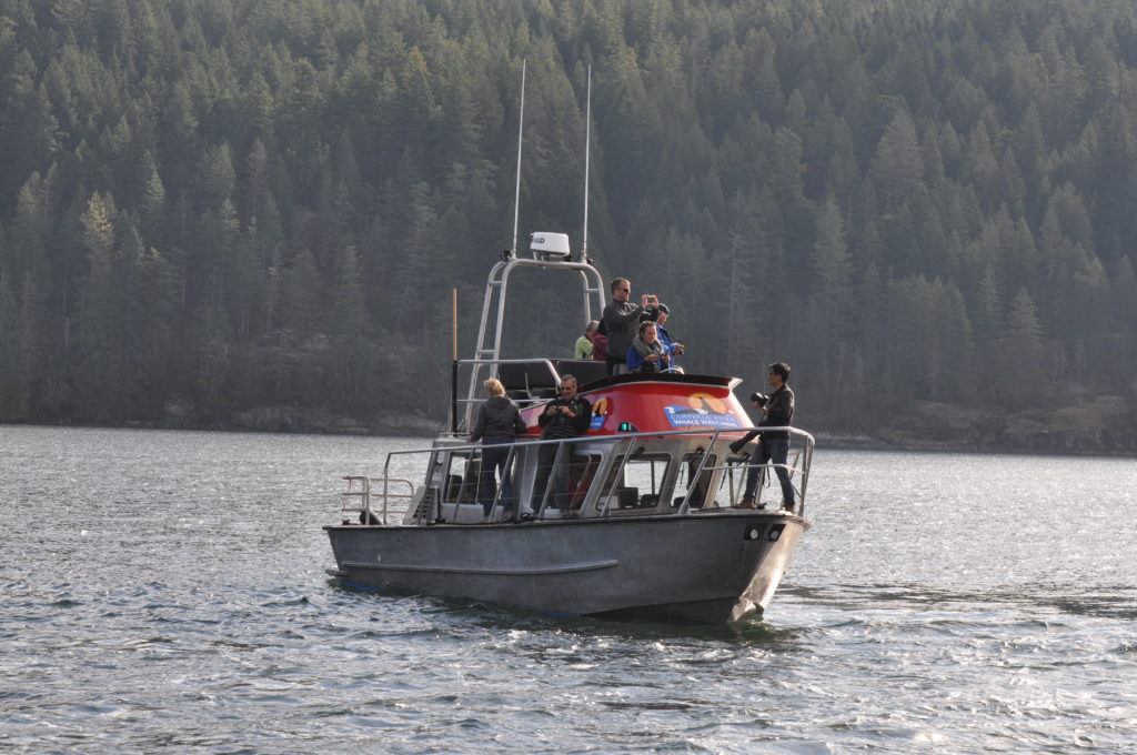 Covered Whale Watching Vessel with guests on board