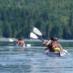 Two Kayakers paddling Discovery Islands on Kayaking Tour