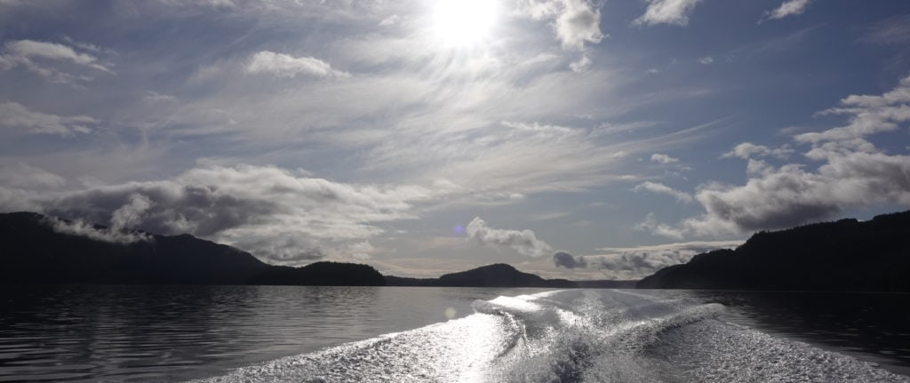 Waves from boat driving away on flat calm water. The sun is shining on the water
