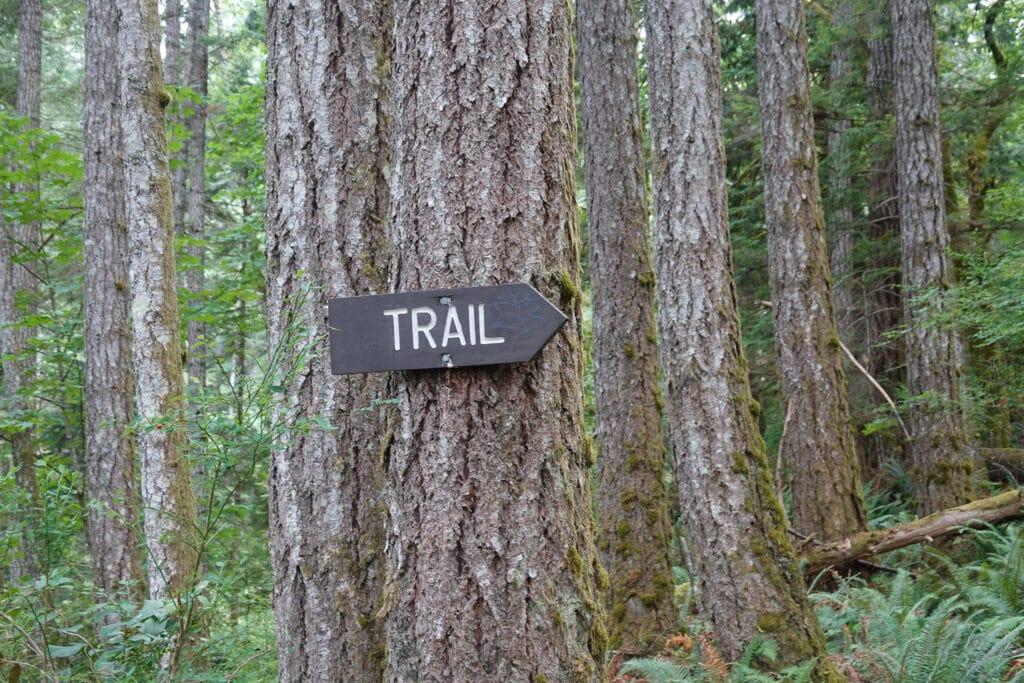 Trail Marker on a tree