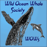Wild Ocean Whale Society Logo