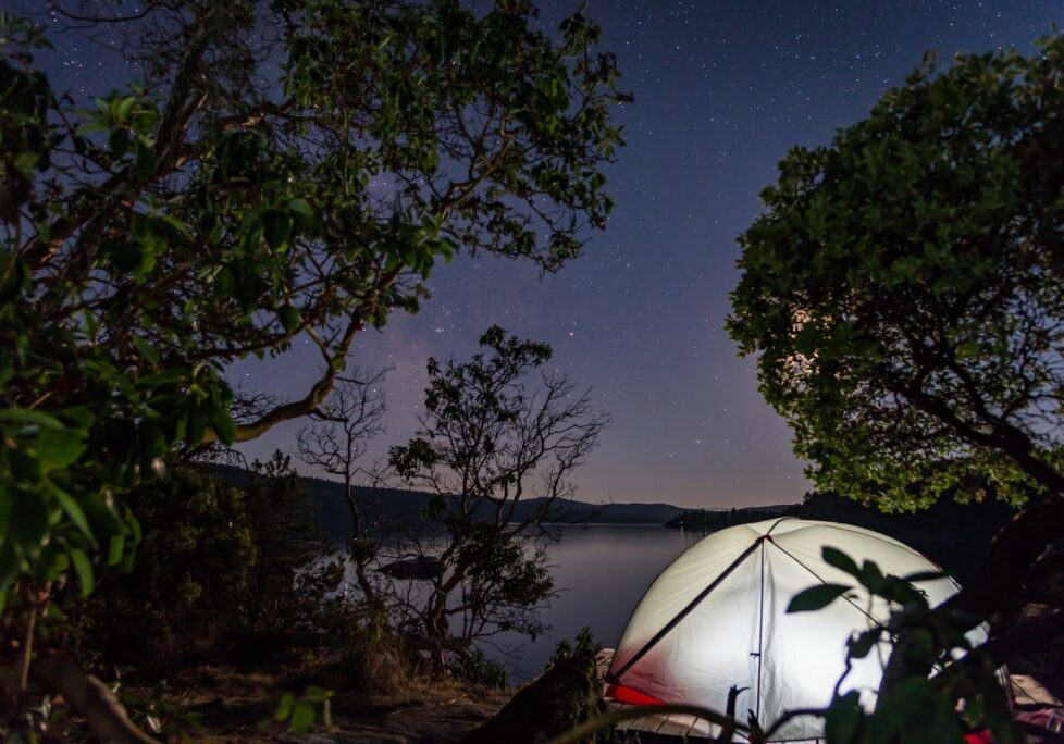 Lit up Tent on beach between Arbutus trees at night under a Stary Sky